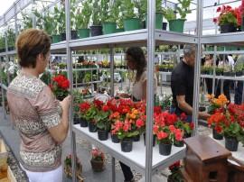 feira_das_flores_antonio david 05.05.11 (5)