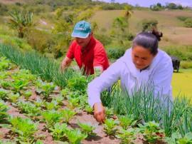 agricultura familiar foto jose marques secom pb_7