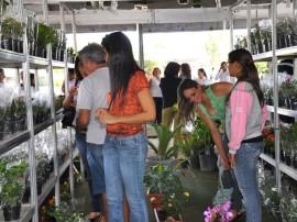 10.05.12 feira_flores_foto_jose lins (81)