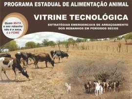 Cartaz_vitrine tecnologica 310x440.cdr