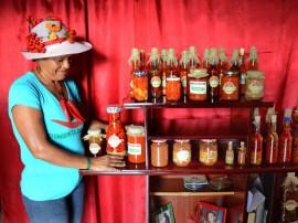 plantio de pimenta - agricultura familiar_foto_antonio david (1)
