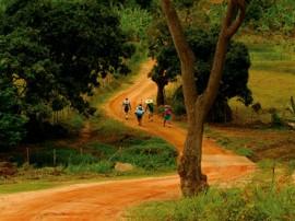 pb_bananeiras_trilha_ecologica
