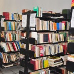 29.11.12 biblioteca_publica_foto_vanivaldo ferreira (31)