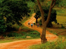 pb-bananeiras-trilha-ecologica