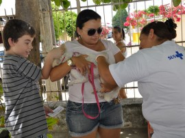 vacinacao de animais foto jose lins1