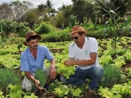22.01.13 estiagem_polticas_publicas_favor_agricultor (2)