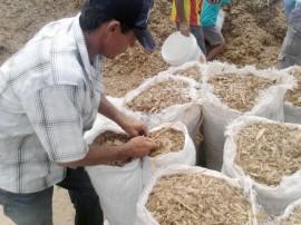 entrega de racao no cariri e sertao da paraiba (3)