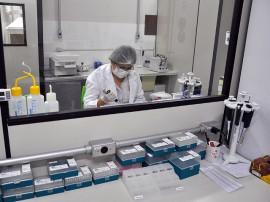 laboratório DNA - IPC - foto de antonio david (9)
