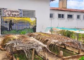 secap maxima projeto cultivando a liberdade foto roberto guedes (1)