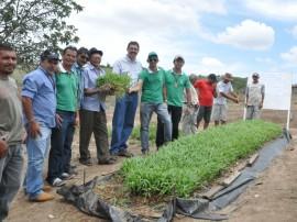 20.02.13 agricultores_familiares_lagoa_de roca_investem_avicultura (3)