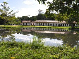 jardim botanico_trilha_paisagem_ fotos_Walter Rafael (26)