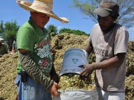 defesa civil entrega de racao em sousa_fotos roberto guedes (18)