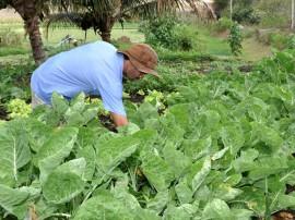 emater pnae agricultura  familiar nova floresta foto antonio david (1)