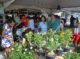 09.05.13 feira flores movimentacao 11 270x202 - Feira de Flores oferece opção de presentes para o Dia das Mães