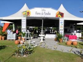10.05.12 feira flores foto jose lins 5 270x202 - Governo do Estado promove Feira de Flores na Empasa