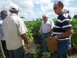 Ozorio 06 02 2013 2481 270x202 - Governo estimula controle natural de pragas em plantações de hortaliças e frutas na Paraíba