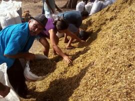 distribuiçao de raçao animal foto secom pb 111 270x202 - Governo distribui mais de 800 toneladas de ração e beneficia 3,5 mil criadores