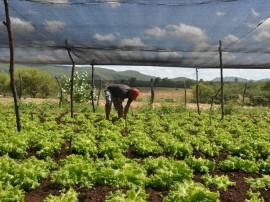 emater agricultura familiar  DSC 0506Vieiropólis 270x202 - Governo incentiva agricultura familiar no Sertão paraibano