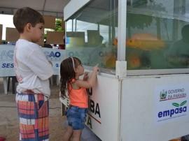 empasa distribuicao de alevinos em sousa aquario 3 270x202 - Aquário da Empasa é destaque em ação de cidadania em Sousa