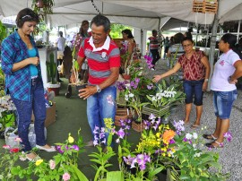 empasa feira de flores foto kleide teixeira 1381 270x202 - Feira de Flores com preços populares movimenta Empasa na Capital