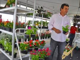 empasa feira de flores foto kleide teixeira 19 270x202 - Feira de Flores com preços populares movimenta Empasa na Capital