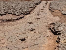 pegadas do vale dos dinossauros em sousa 2 270x202 - Vale dos Dinossauros será reaberto ao público nesta sexta-feira