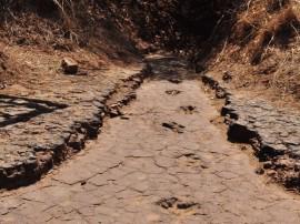 pegadas do vale dos dinossauros em sousa 6 270x202 - Revitalização do Vale dos Dinossauros é concluída e preserva sítio arqueológico