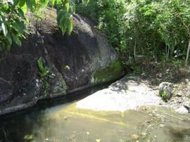 emater Caminhada na natureza em Gurinhem semana do meio ambiente 1 270x202 - Caminhada marca comemorações da Semana do Meio Ambiente