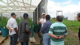 emater agricultores de santa cecilia INSA estiagem semiarido 3 270x151 - Agricultores conhecem ações de convivência com estiagem no semiárido
