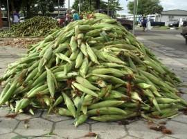 empasa libera comercio do milho verde 13 270x202 - Procon-PB aponta variação da mão de milho em até 416%