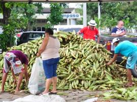 empasa milho verde foto josé lins 02 270x202 - Produtores rurais recebem incentivos para comercializar milho verde na Empasa