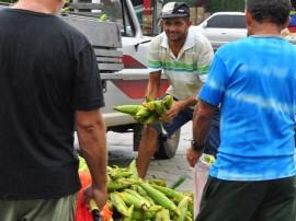 empasa venda de milçho foto kleide teixeira 47 270x202 - Feira de milho verde da Empasa terá forró-pé-de-serra neste sábado