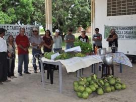 10.07.13 agricultores sao preparados pelo governo comercial 4 270x202 - Agricultores são preparados pelo Governo para comercialização dos produtos