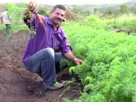 16.07.13 agricultores esperanca francinaldo na produção 4 270x202 - Governo apoia produção sem agrotóxicos em Esperança