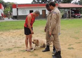22.07.13 bombeiros recebe caes 11 270x192 -  Corpo de Bombeiros adquire cães para operações de resgate de vítimas
