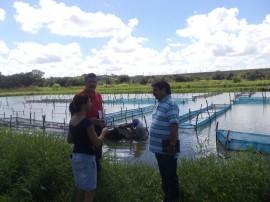 28.06.13 governo instalar criatorio peixe pirarucuemba 21 270x202 - Governo pretende ampliar criatório de peixe em Bananeiras