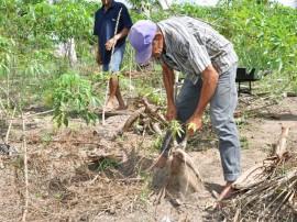 emater amplia participacao de agricultores no pnae e paa em mamanguape 3 270x202 - Governo amplia participação de agricultores no Pnae e PAA