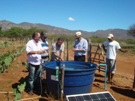 emater producao de palma irrigadausando energia solar 1 270x202 - Produção de palma irrigada usando energia solar é modelo para Nordeste