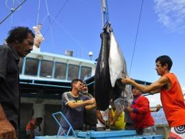 empreender barco foto kleide teixeira 104 270x202 - Governo apoia pesca e resultados animam cooperativa de Cabedelo
