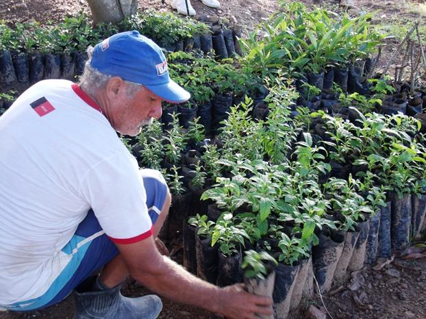 mudas 2 - Seap entrega mudas de árvores nativas para familiares de detentos em Campina Grande
