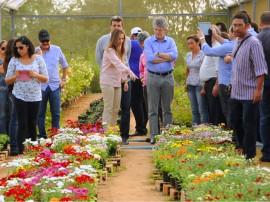 AREIA COOPERATIVA DE FLORES 16 270x202 - Ricardo conhece produção de polpa de frutas e flores financiadas pelo Cooperar
