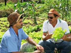 emater agricultura familiar 21 270x202 - Governo ensina agricultores a planejar atividades na zona rural