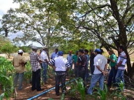 emater agricultura familiar 3 270x202 - Governo ensina agricultores a planejar atividades na zona rural