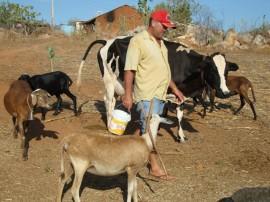 emater familia vive em menos de um hectare 1 270x202 - Governo incentiva agricultura familiar no Sertão paraibano