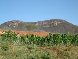 emater familia vive em menos de um hectare 5 270x202 - Governo incentiva agricultura familiar no Sertão paraibano
