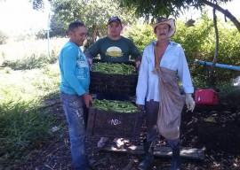 emater coremas11 270x192 - Produção familiar garante renda para agricultores do Sertão