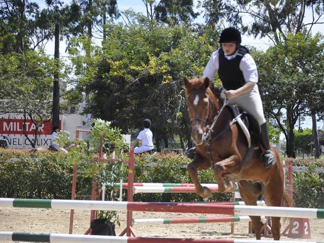 hipismo paraibano cavalos esporte foto joao francisco (27)