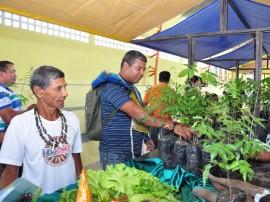 sedap agricultores indigenas ja negociam pelo pnae e paa 2 270x202 - Governo beneficia agricultores indígenas com jornada de inclusão