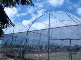 06.09.13 cooperar viabiliza construcao estufa 1 270x202 - Cooperar viabiliza construção de estufa para agricultores de Pitimbu