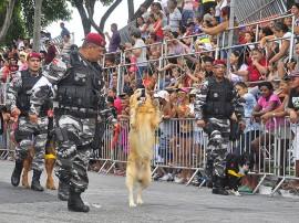 07.09.13 desfile civico fotos roberto guedes secom pb 16 270x202 - Desfile da Independência reúne mais de 10 mil pessoas na Capital